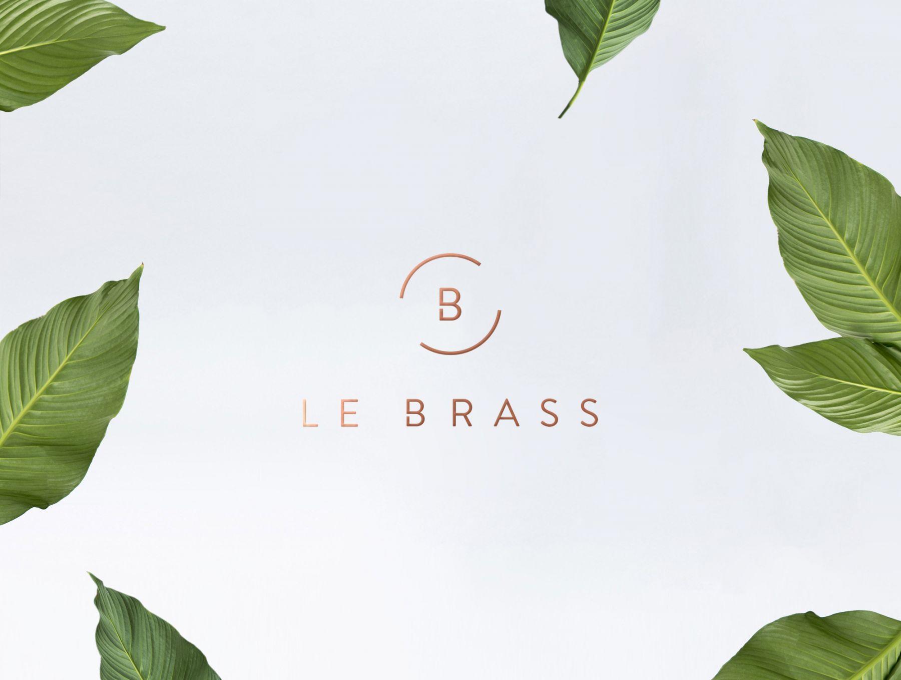 3573_lebrass_logo